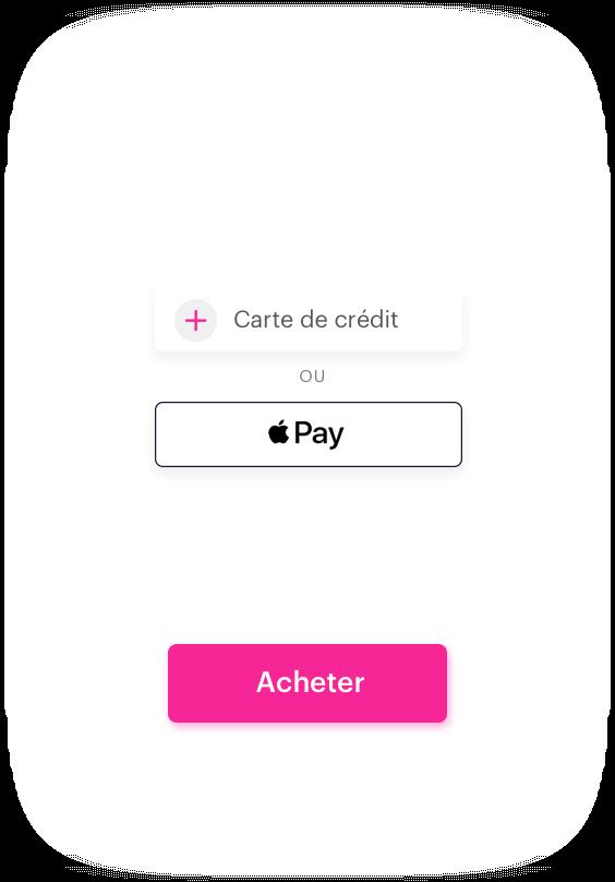 Goose Payment Screen